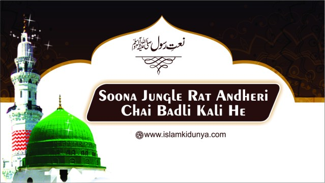 Soona Jungle Rat Andheri Chai Badli Kali He