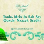 Tooba Mein Jo Sab Sey Oonchi Naazuk Seedhi Nikli Shaakh