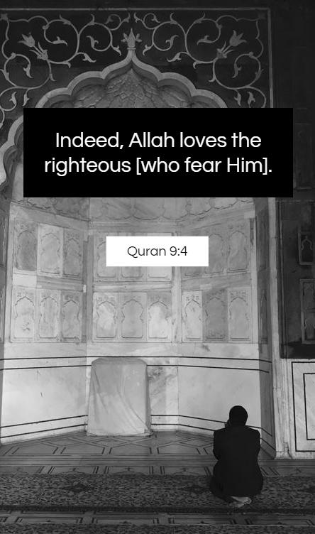 Quran Quotes