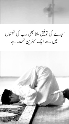 "Islamic Quotes Urdu free download ""Best islamic quotes with images"