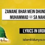 Zamane Bhar Mein Dhundha Hai Muhammad ﷺ Sa Nahi Koi
