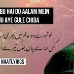 Khushbu hai Do Aalam mein Teri Aye Gule Chida – Naat Lyrics