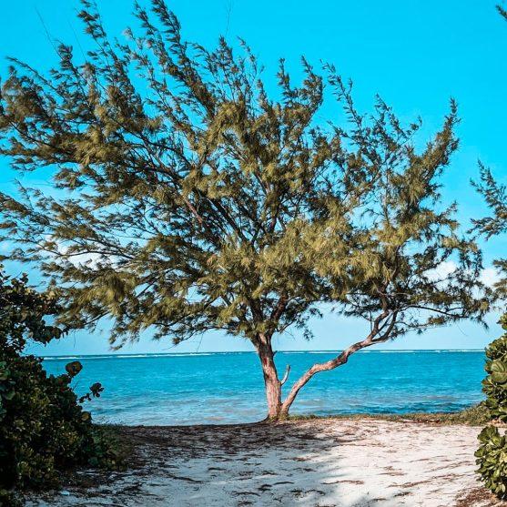 barkers beach grand cayman