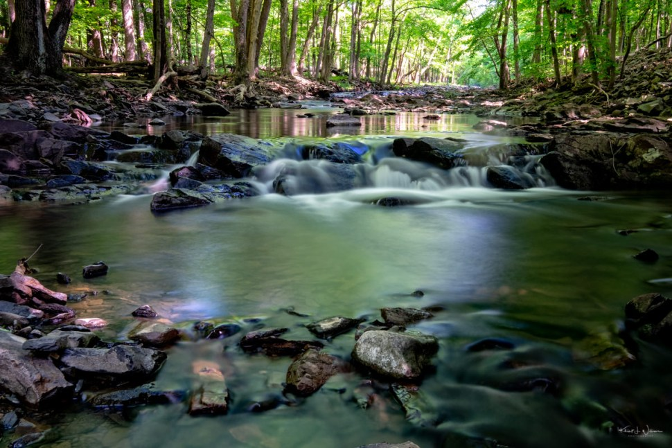 Rock Brook, Rocks, Water, Trees, Forest