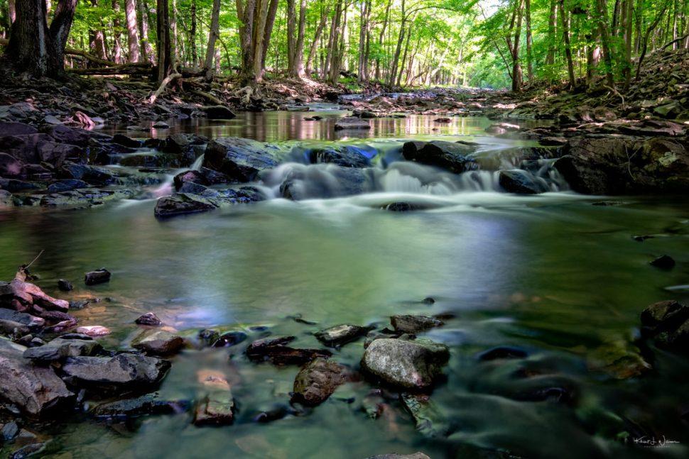 Rock Brook, Rocks, Water, Trees, Forest