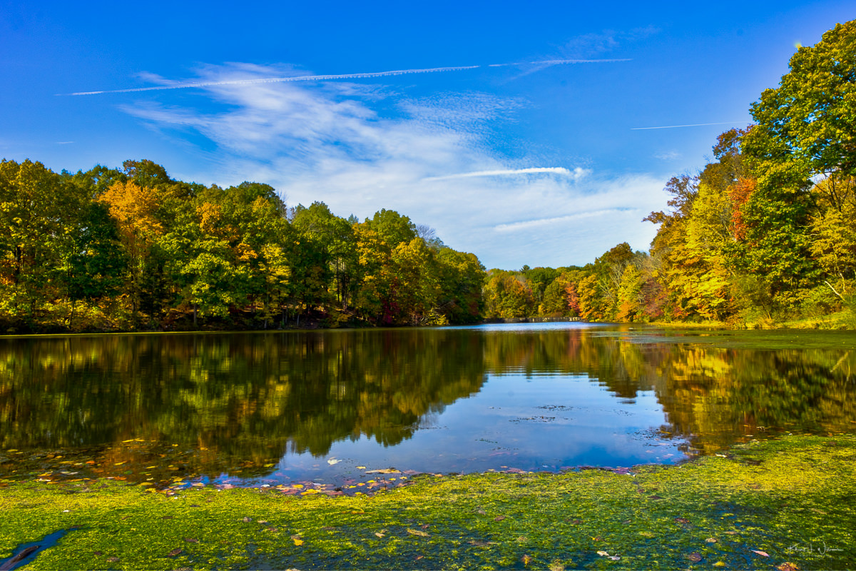 <span class='p-name'>Mountain Lakes Nature Preserve</span>