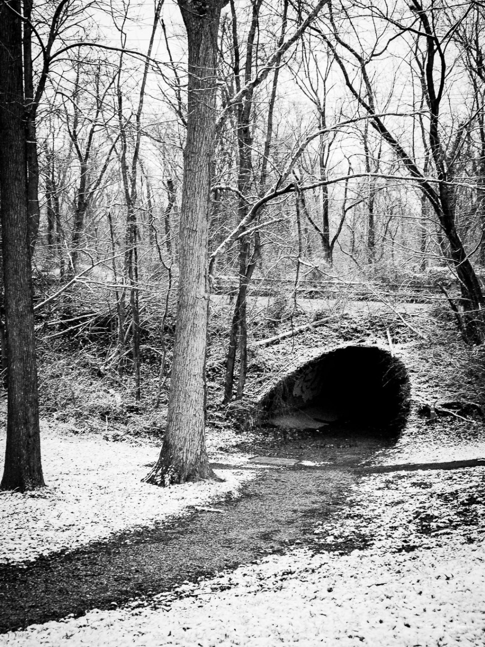 Pathway to a tunnel with snow all around