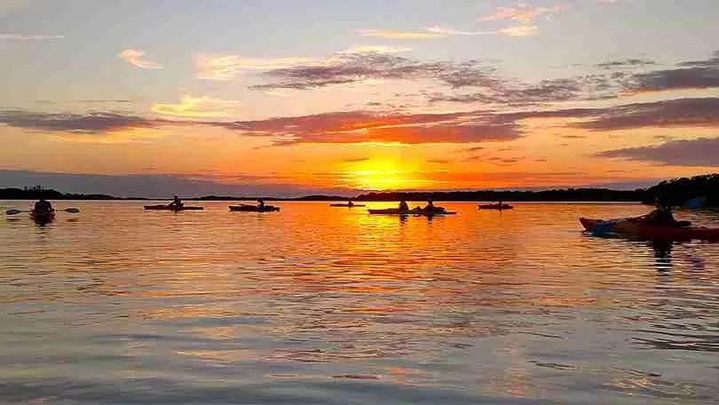 Island Kayak Tours sunset tour kayaking group