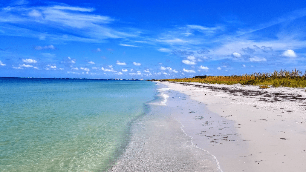 The beautiful beach of Shell Key.
