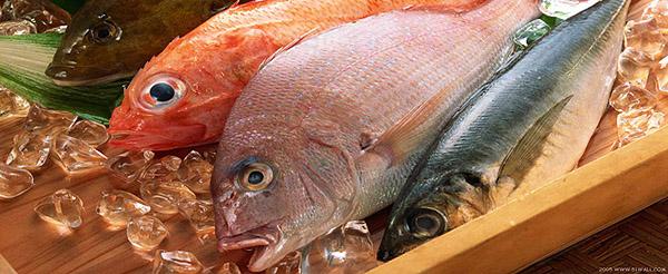 nc-catch-fresh-fish