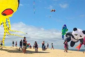 36th Annual Rogallo Kite Festival