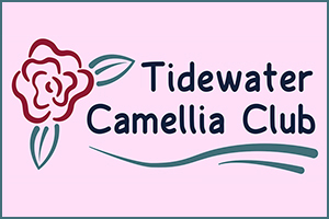 Tidewater Camellia Club Show & Sale