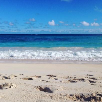 authentic birdsongs, sea sounds, boatrides