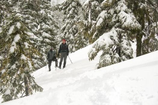 Island Mountain Ramblers descending Mount Becher; Matthew Lettington