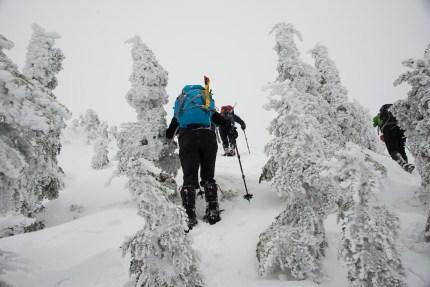 mt-cain-snowshoe-1095
