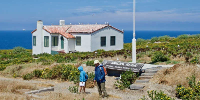 Visitors explore the area near the visitors center on Anacapa Island.