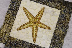 Margarets Star Fish