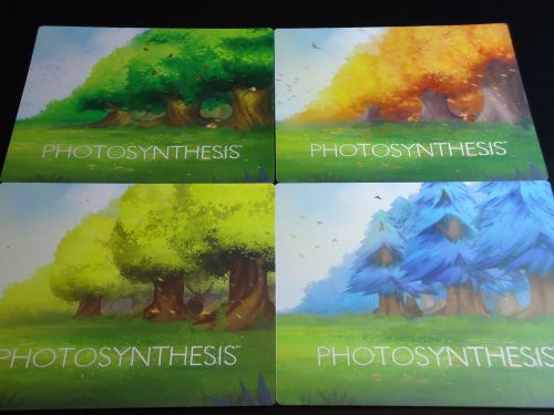 Photosynthesis - Board Backs