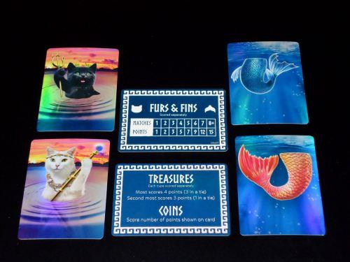 Catlantis - Setup Cards