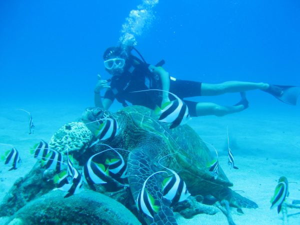 Scuba Diving Sweet Maui