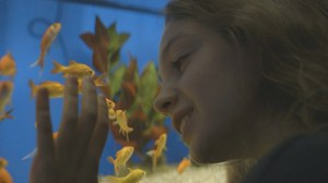 A still from the film Gold, by Cleo Samoles-Little