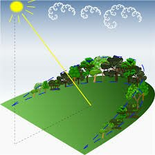 Microclimate   Types of Microclimate