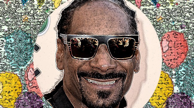 October 20 – Snoop Dogg gets a struggle with a toaster