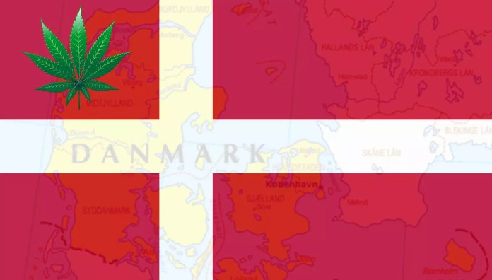 cannabis in copenhagen - cannabis trials in denmark