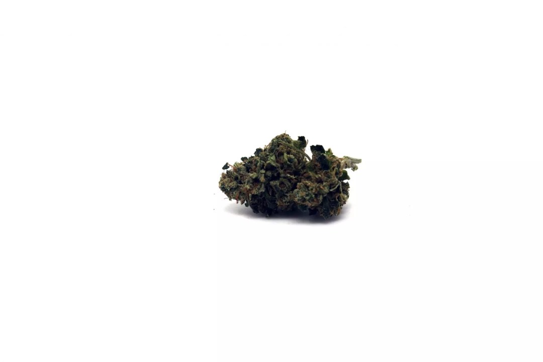 East Coast Sour Diesel, East Coast Sour Diesel Cannabis Strain Information & Review