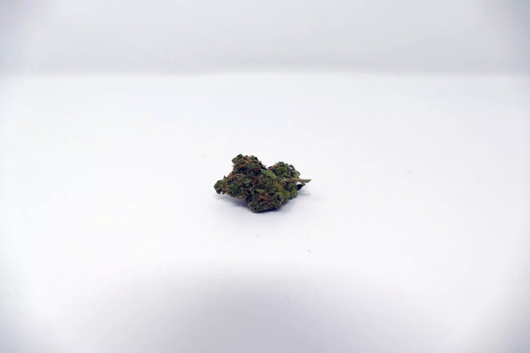 Blues Cannabis Strain, Blues Cannabis Strain Information & Review, ISMOKE