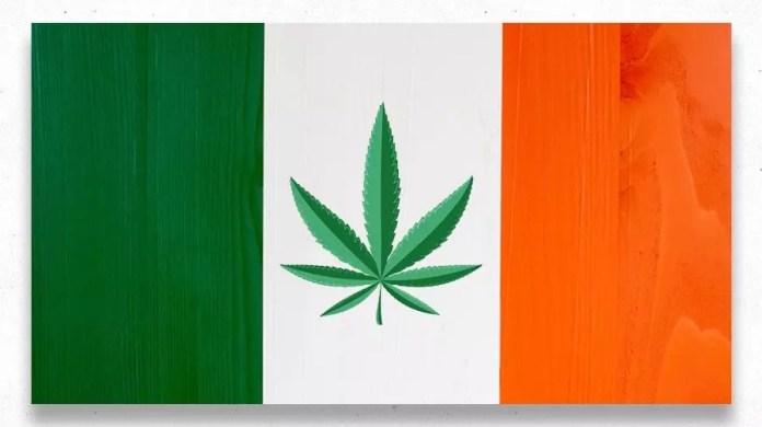 , Exploring the European Cannabis Scene (Part 2)