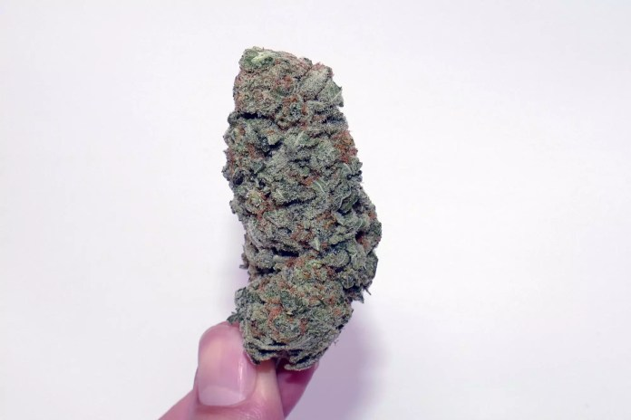 Zed, Zed Cannabis Strain Information & Review