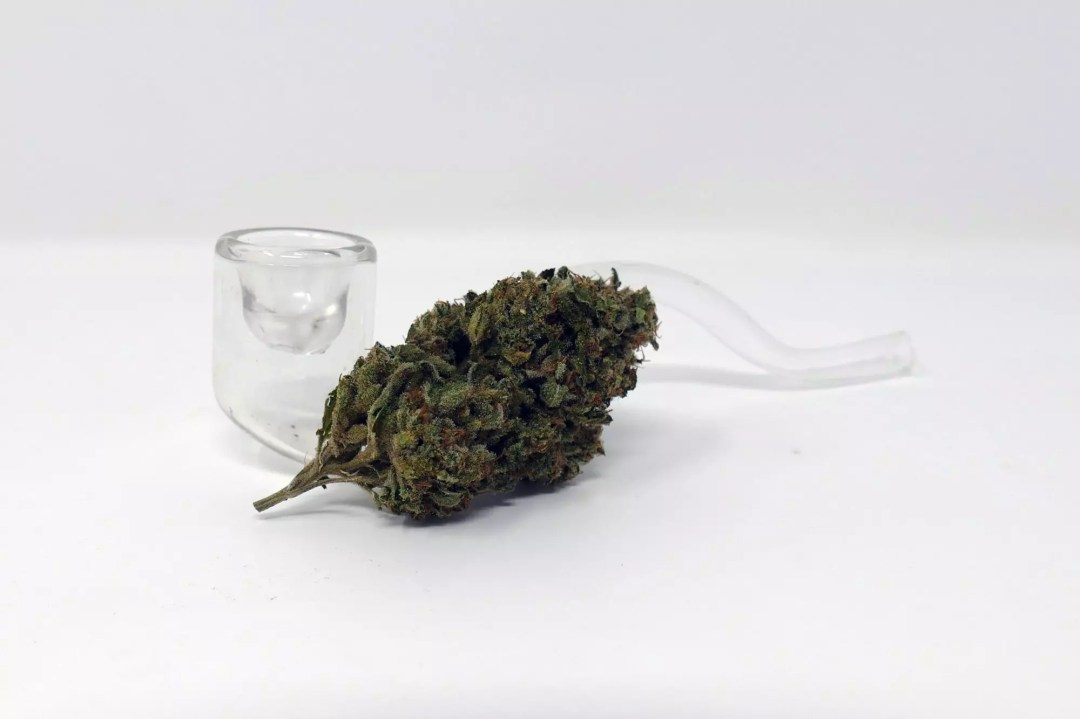 Road Dawg, Road Dawg – Cannabis Strain Review & Information, ISMOKE