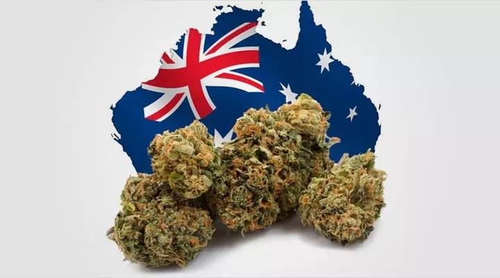 Cannabis in Australia 2018