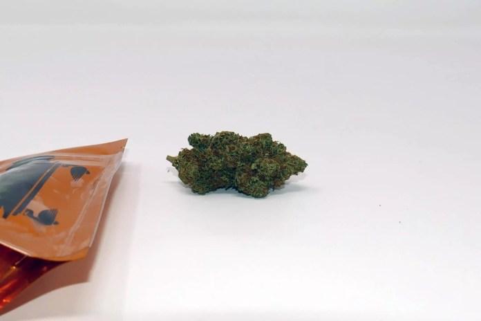 CaliPo, CaliPo Cannabis Strain Review & Information