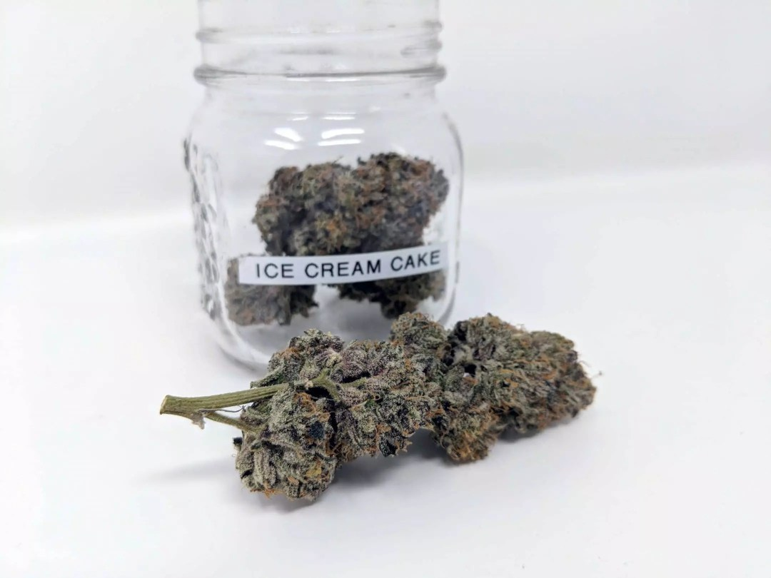 Ice Cream Cake, Ice Cream Cake Cannabis Strain Review & Information