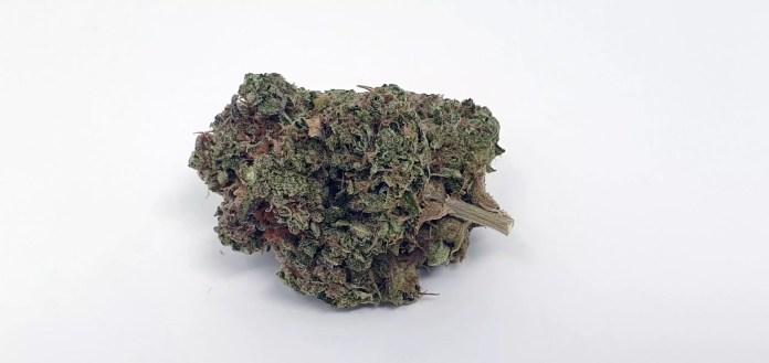 Sour Diesel Bx2, Sour Diesel Bx2 Cannabis Strain Review & Information