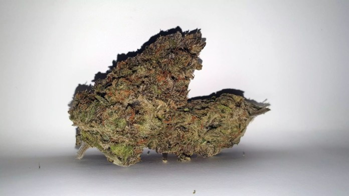 Chocolate Orange, Chocolate Orange Cannabis Strain Review & Information