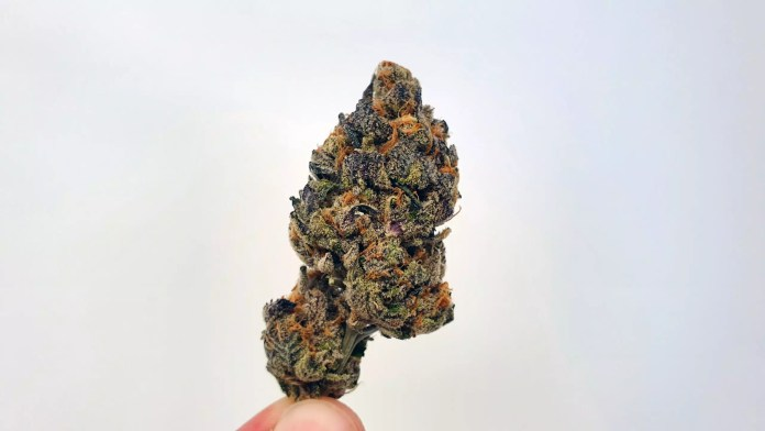 Footloose, Footloose Cannabis Strain Review & Information