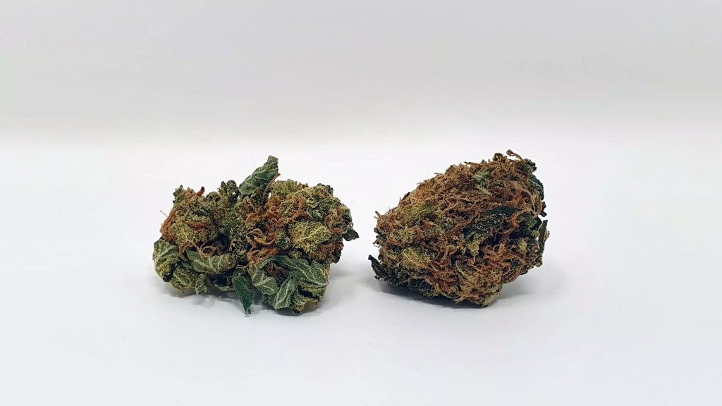 Sour Headstash, Sour Headstash Cannabis Strain Review & Information