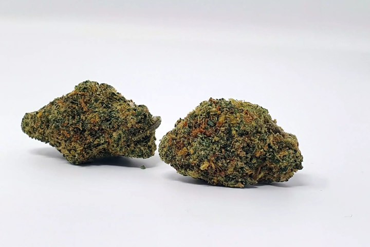 Rainbow Sherbet Cannabis Strain Review Information