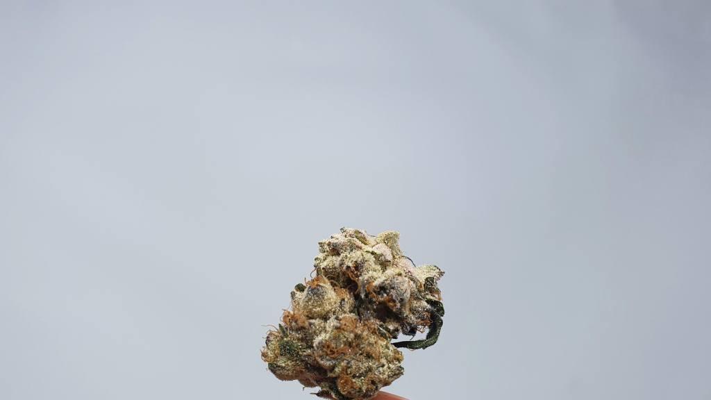 Kent Valley Kush, Kent Valley Kush Cannabis Strain Review & Information, ISMOKE