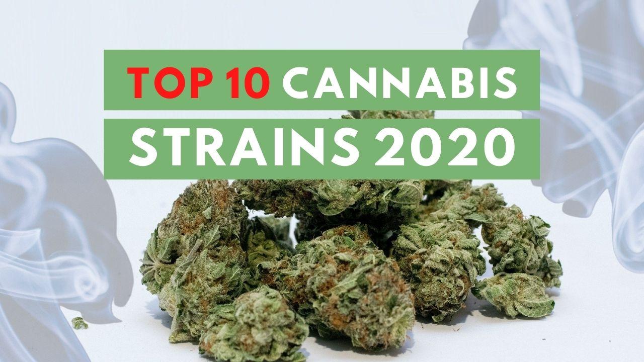 Top 10 Cannabis Strains 2020 - ISMOKE