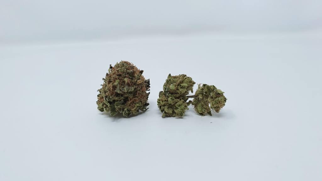 phantom og, Phantom OG Cannabis Strain Review & Information, ISMOKE