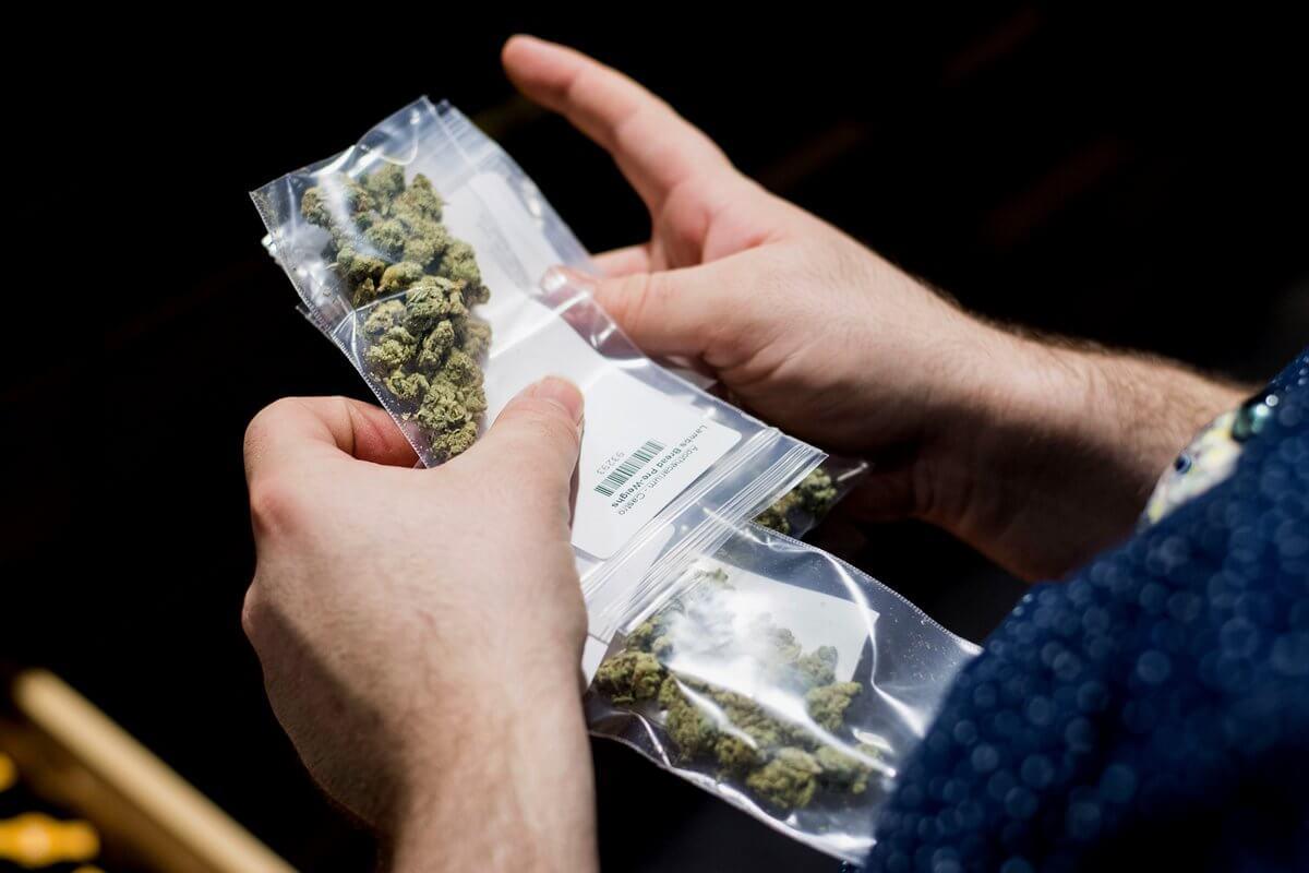 Viva la legalización: San Francisco eliminará miles de condenas penales relacionadas con la marihuana