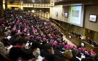 Synodus, 2