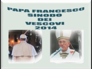 Papa Synodi