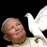 Papst Taube