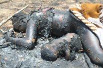 Islam violenta nigéria