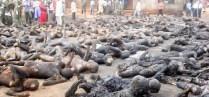 Islam violenta masacre Nigeria